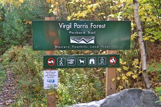 parrisforest1.jpg